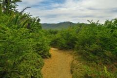 Wanderung zum Refugio Frey