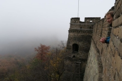 Blick aus der Mauer