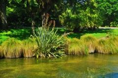Botanic Garden-1