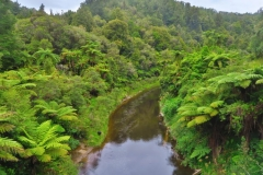 Whanganui River Zufluss