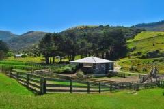 Flea Bay Farm