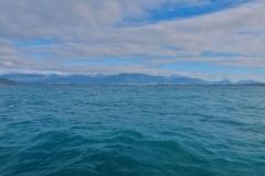 Whale Watch - Blick Richtung Kaikoura