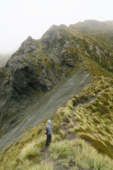 Kepler Track auf der Ridge