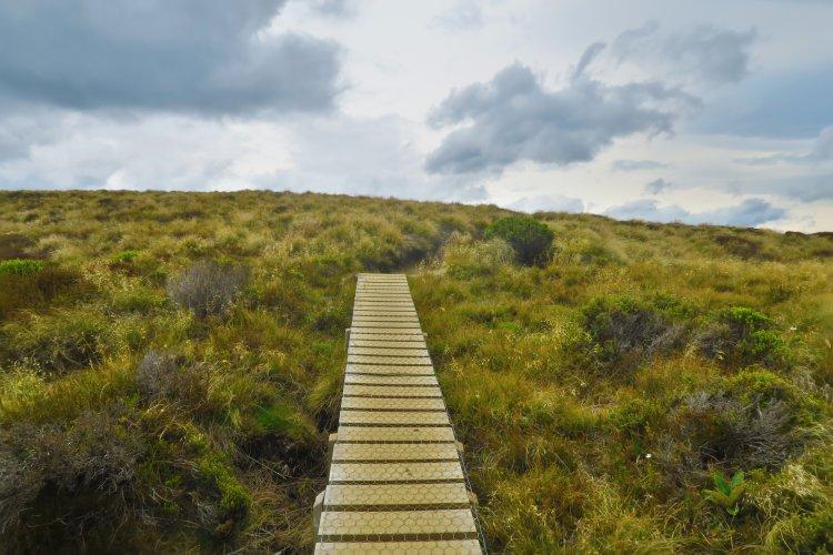 North-Shore-Track