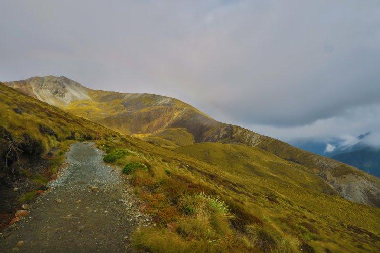Weg zum Mount Luxmore