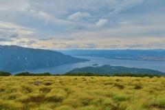 Insel im Lake Te Anau