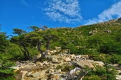 Aufstieg zu Laguna de Los Tres