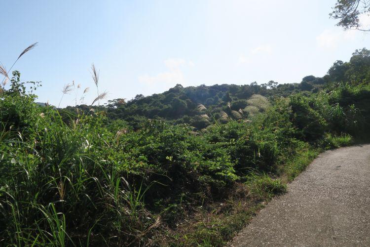 Lamma Island - Rundweg