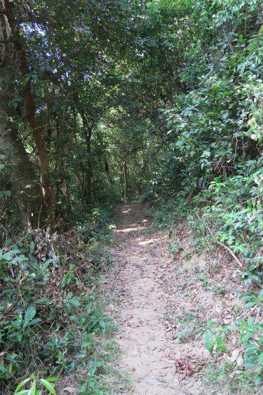 Lamma Island Trail
