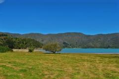 Kenepuru Sounds - Ohauparuparu Bay