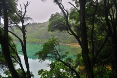 Marlborough Sounds - Spiegelung