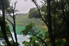 Marlborough Sounds - Spiegelung