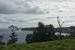 Sandrett Regional Park - Bay