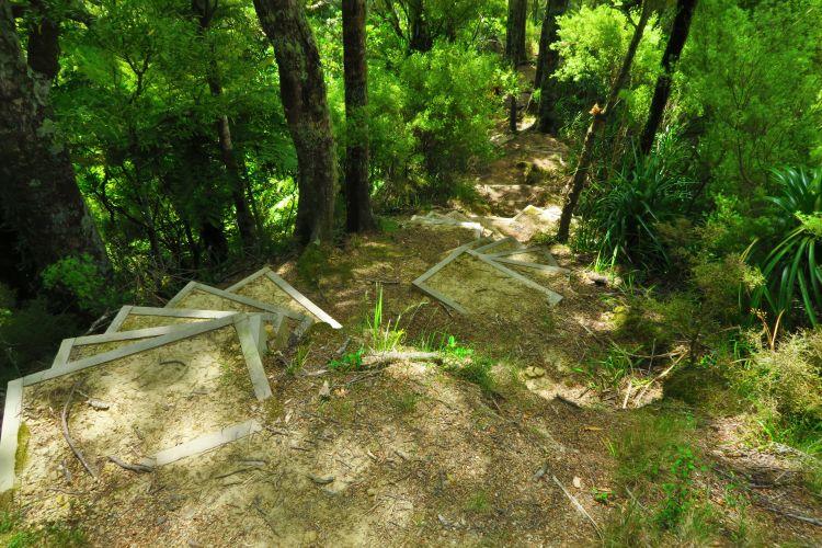 Mangakawa Track-Holzstufen