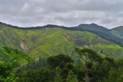 Ridge Track
