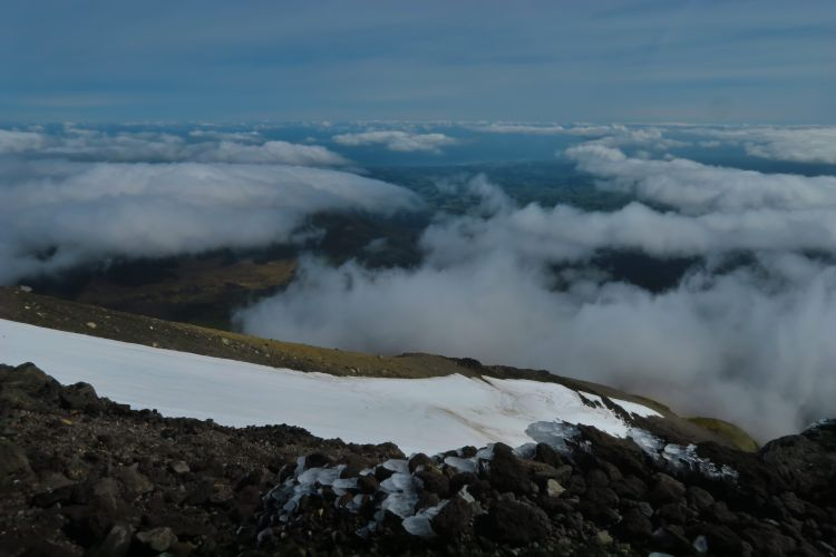 Ngarara Lizard - Blick auf das Snow Valley