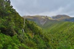 Abstieg-Bäume-an-der-Translator-Road