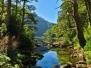 Nationalpark Huerquehue
