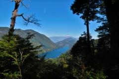 Blick auf den Lago Tinquilco-2