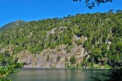 Lago El Toro-6