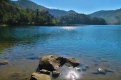 Lago Verde - Schwimmer