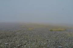 Robert Ridge Route - Blick ins Tal-2
