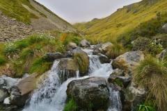 Speargrass Creek Route - Bach