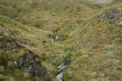 Speargrass Creek Route - Blick Richtung Robert Ridge Route