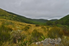 Speargrass Creek Route - Tal-2