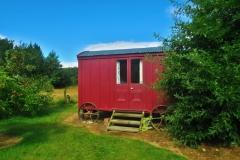 Airbnb Shepherds Hut Glamping - Wagen