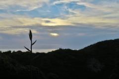 Abendstimmung Riporo Beach