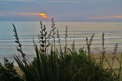 Baylys Beach - Kliffwanderung-2