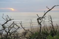 Baylys Beach - Kliffwanderung-3