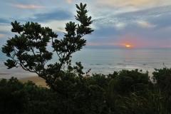 Baylys Beach - Kliffwanderung-4