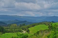 Horeke Road - Ausblick-2