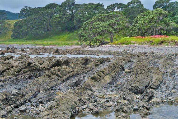 Papatea Bay - Lava Schichten-2