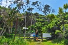 East Cape Lighthouse - Da gehts lang