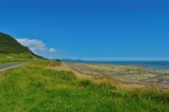 Te Araroa - Strasse zum East Cape Lighthouse