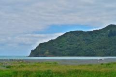 Torere - Bucht mit Strandgut