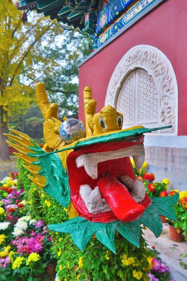 Beihai Park-Blumendrachen Detail