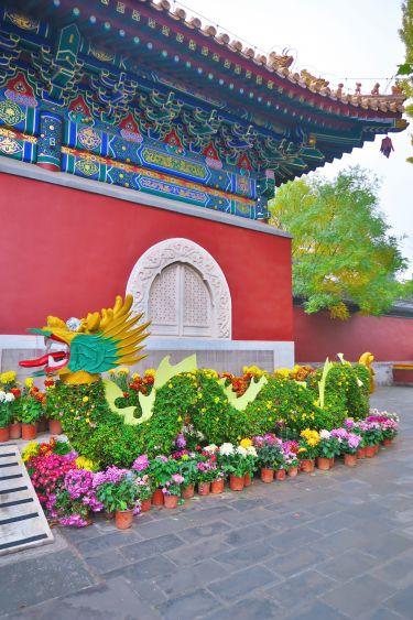 Beihai Park-Blumendrachen