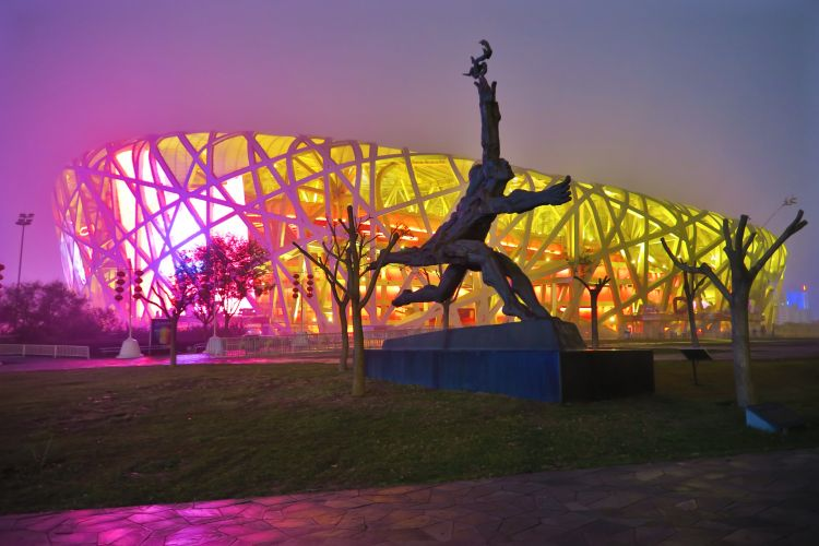Nationalstadion-the-nest-Laeufer