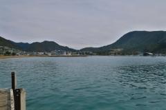 Picton - Blick Richtung Hafen vom Endeavour Sound
