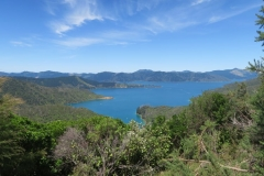 Queen Charlotte Track - Bay of Mary Coves