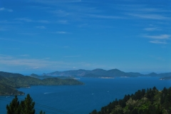 Queen Charlotte Track - Endeavour Inlet