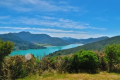 Queen Charlotte Track - Ohauparuparu Bay