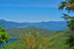 Queen Charlotte Track - Picton