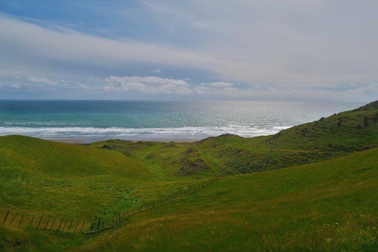 Ruapuke Campground - Weg zum Strand