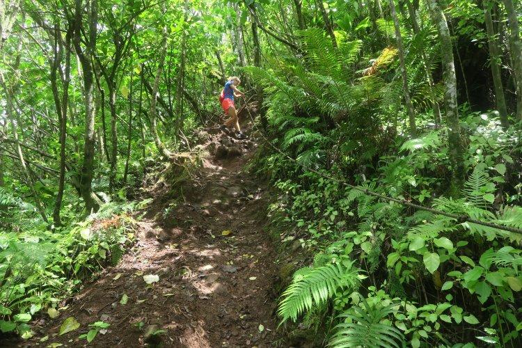 Cross-Island Track - Klettersteig