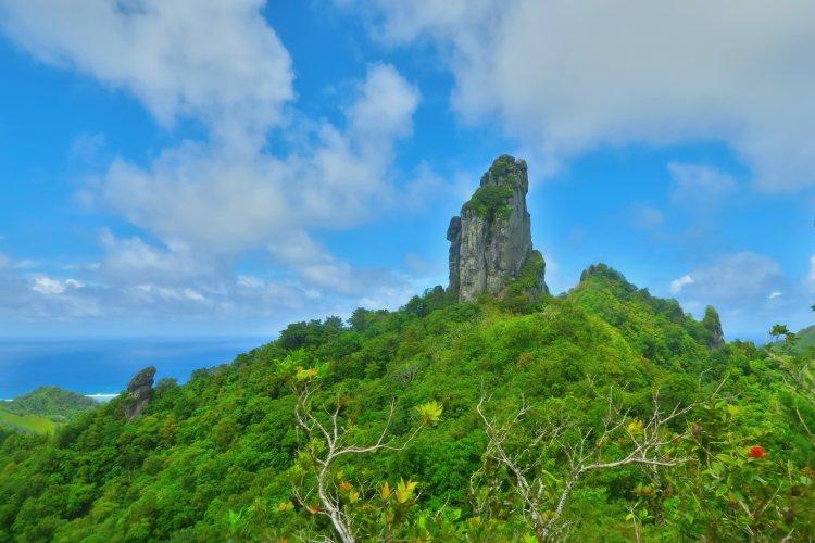 Cross-Island Track - The Needle
